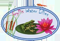 Gryllis Water Lilies